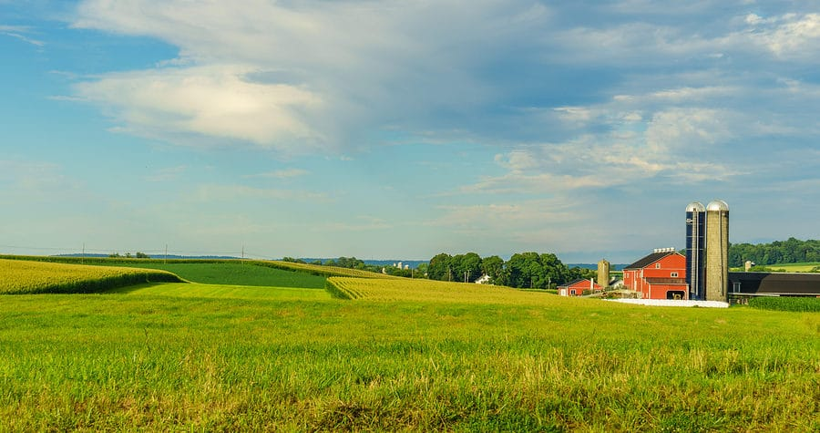 Visit Amish Country Near Lanesboro, Minnesota